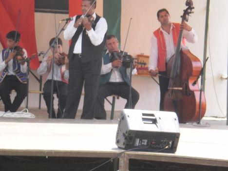 Falunap 2010, Greznár Zoltán zenekara