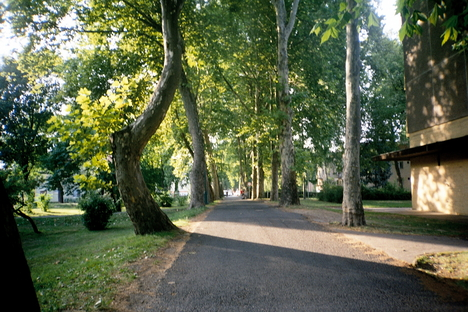 Ajkai utcák 5