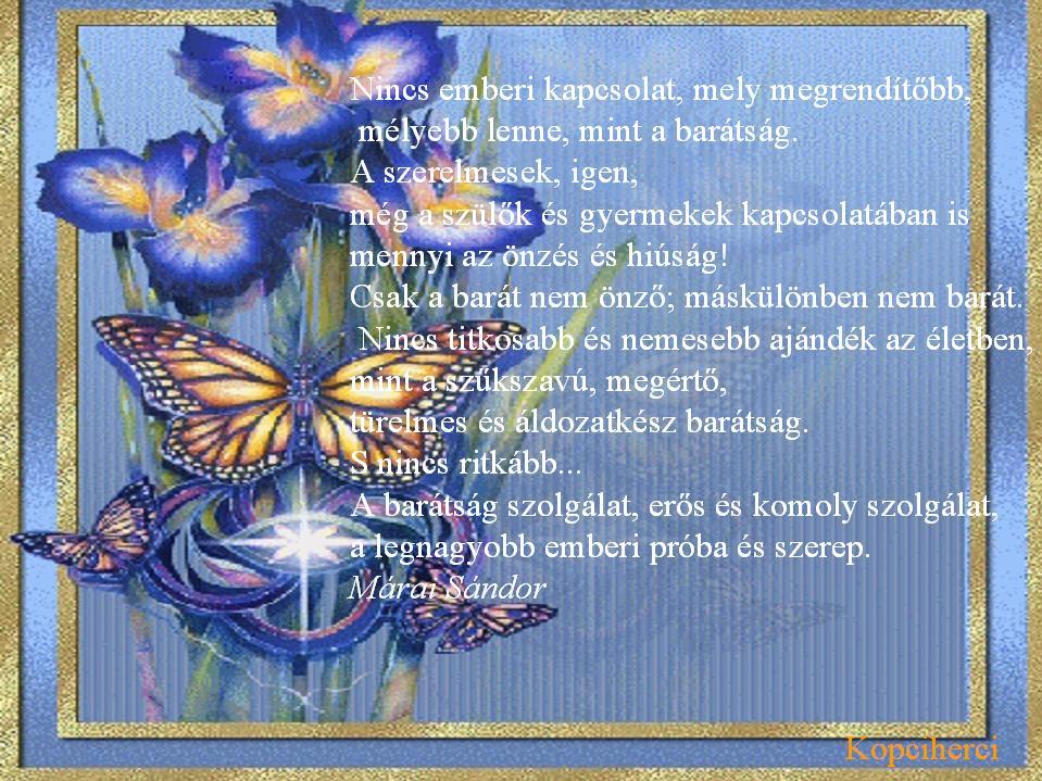márai idézetek a barátságról Idézet: barátság /Márai (kép)