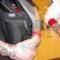 Tattoo verseny 2010. Cannonbal. Anubisz 6