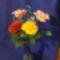 (5)rózsa 2