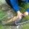 Halászat 6