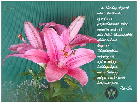 http://www.rasu527.eoldal.hu/fotoalbum/-muveszet-irodalom-tunder-versek-energizers/rasu-tunderanya-csatari-rozsa-versei  2