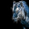 Tiger-fractal-in-Blue