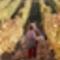 Tokaj Renaissance - A 2006-os szüret képei5