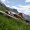 2010 07 08-15 Dolomitok 270