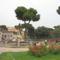 Róma2010- 067-2