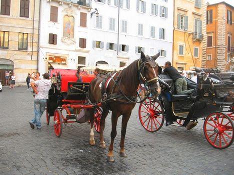 Róma2010- 160-2