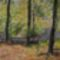 Erdei pihenő a Pilisben