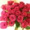 30 szál rózsa 001