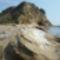 Mounda fok