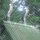 Nyiregyhaza_vadaspark_074_84869_736194_t
