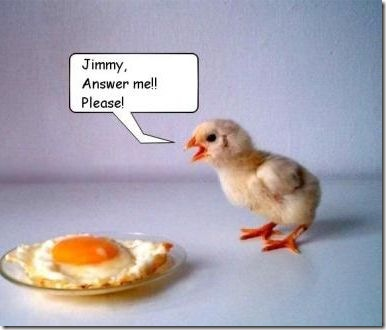 Csirke vs tojás