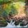 Madarász Rozália festményei