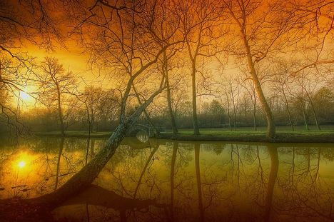 Reflection_of_a_soul_by_lowapproach[1]