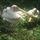 Nyiregyhaza_vadaspark_057_85189_164857_t