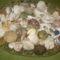 kagylók,csigaházak,tengerisünháza stb..... 2