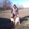 Lennox és Molly2