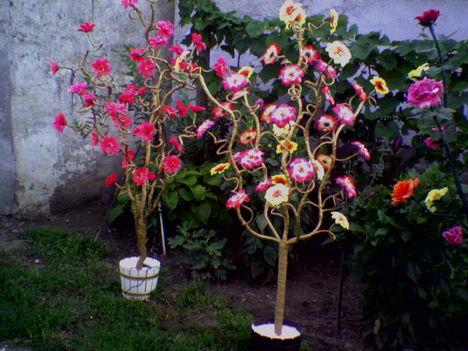 világitós virágfák fajszrol 10