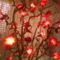 világitós virágfák fajszrol 1