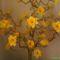 világitós virágfák fajszrol 2