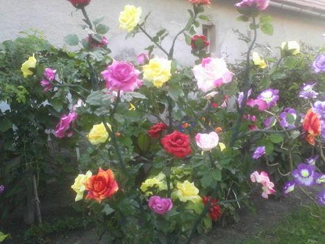 világitós virágfák fajszrol 5