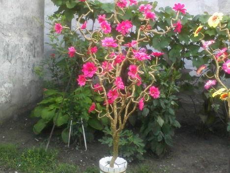 világitós virágfák fajszrol 6