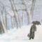 Hóviharban