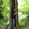 Alcsuti arborétum fája, benne  a fiam.