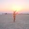 nap lemente a Földközi- tengeren