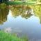 A tó tükrében 1.