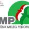Korrigált LMP-s választási plakátok 21