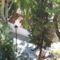 Nei Pori , Meteorák, és a csodálatos Skiatos 38