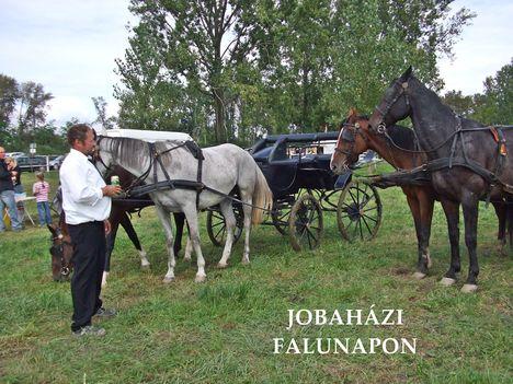 Falujáró 017