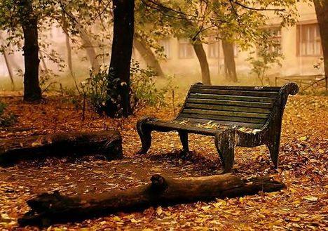 Üres pad őszi parkban