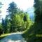 valahova vezet az út