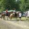történelmi lovasok