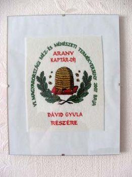 aranykaptár díj, plakett - 2007