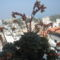 balkonom 004