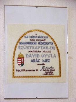 ezüstkaptár díj plakett - 2005