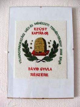 ezüstkaptár díj, plakett - 2008