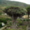 nagyon szeretem a természet csodáit.. 8