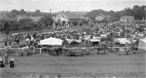 1925 - Marhavásár