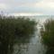 Balatoni őszi sétám képeiből.... 6