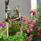 petúnia és Kúszó rózsa