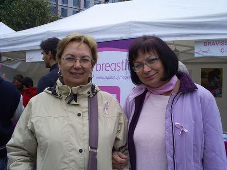 Rózsaszín Egészségnap 2010. 2