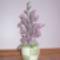 Orchideák gyöngyből 4