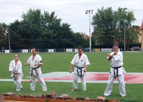 Karate 111