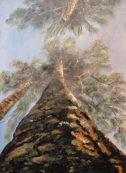 Égig érő fák