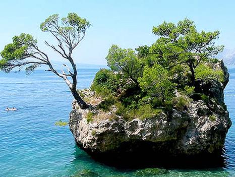 Mini-sziget Berla partjainál